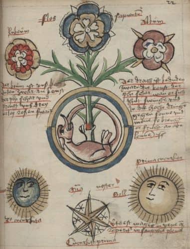 алхимичекие трактаты
